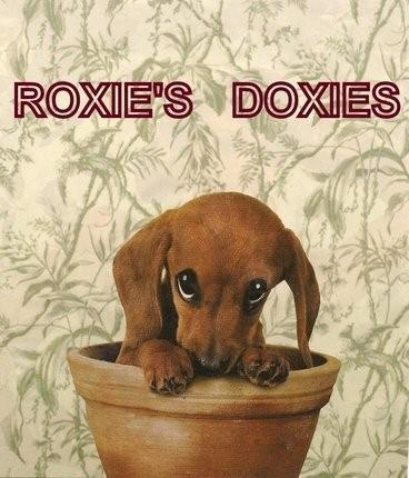Welcome To Roxiesdoxies Home Page